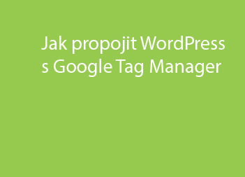 Jak propojit WordPress s Google Tag Manager